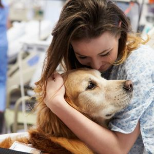 Θεραπεία με τη Βοήθεια Ζώων (Pet therapy)